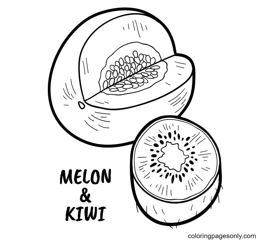 Kiwi and Melon Coloring Page