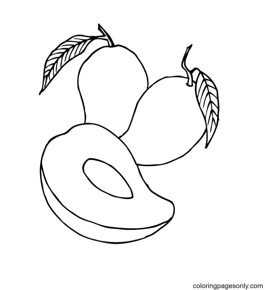 Mango Coloring Page