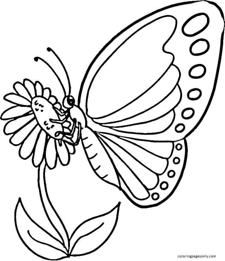 Monarch Butterfly 1 Coloring Page