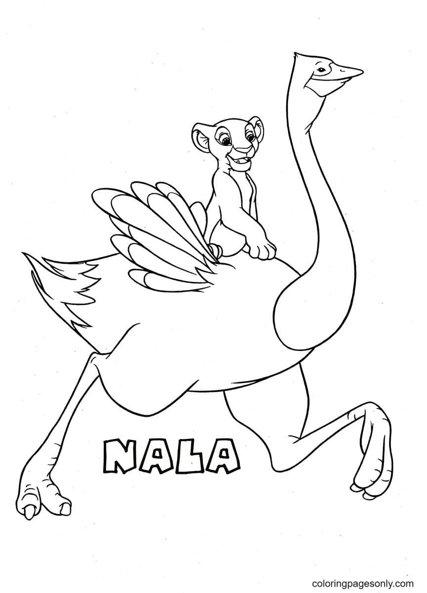 Nala Running With Ostrichs Coloring Page