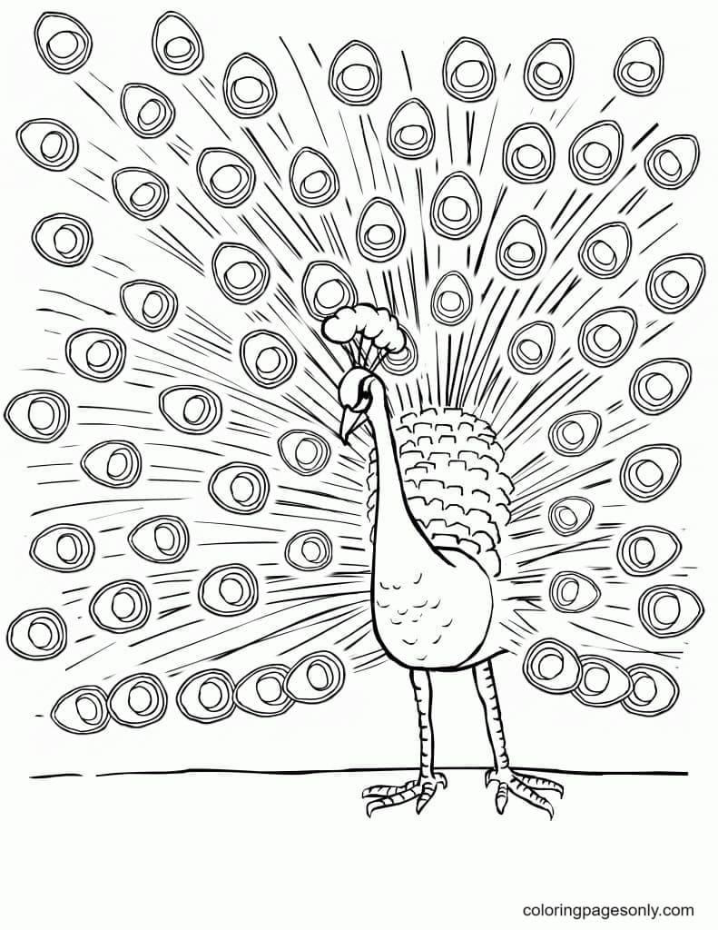 Peacock Printable 2 Coloring Page