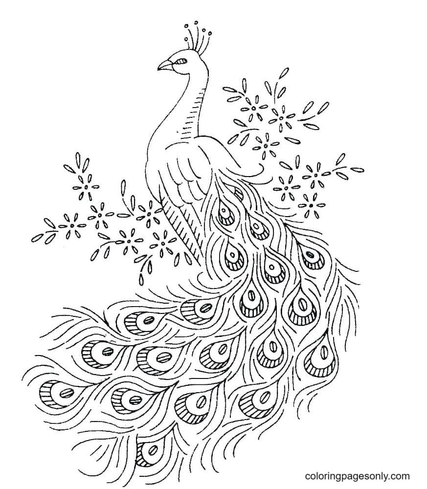 Peacocks Printable Sheet Coloring Page