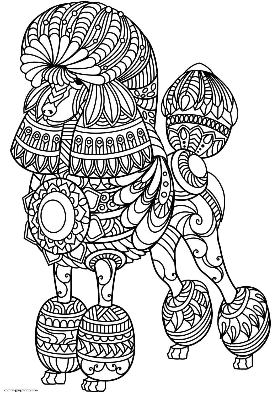 Poodle Zentangle Coloring Page