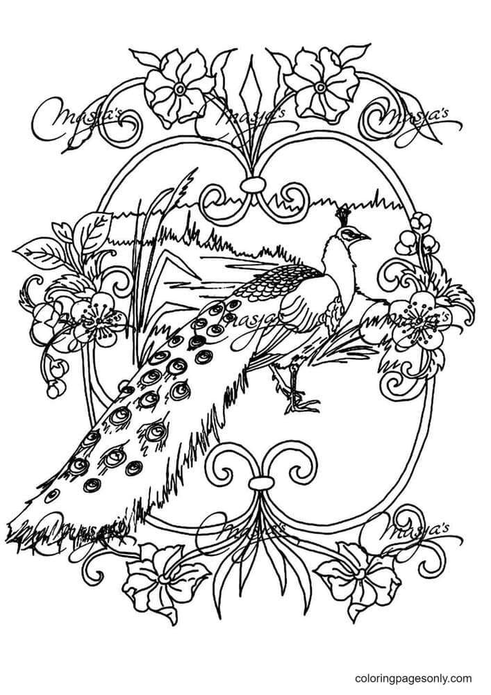 Print Adult Animals Peacock Coloring Page