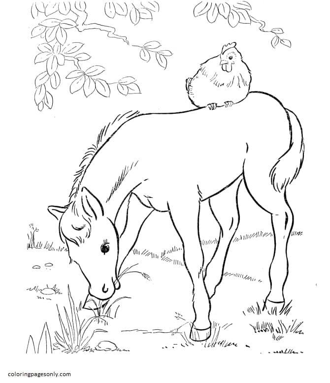 Printable Farm Animals 6 Coloring Page