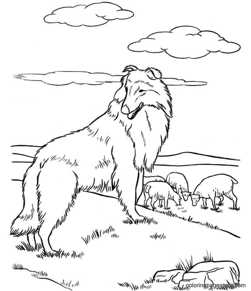 Printable German Shepherd Dog Coloring Page
