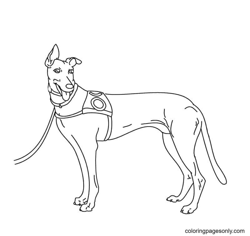 Printable German Shepherd Coloring Page