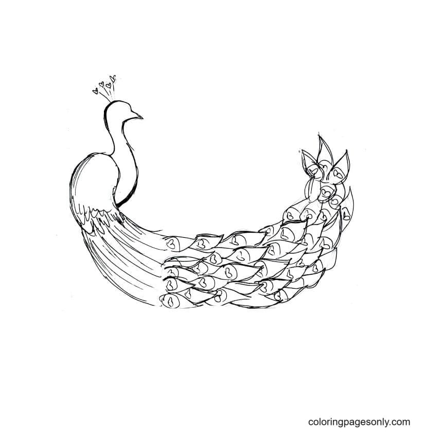Printable Peacock 2 Coloring Page
