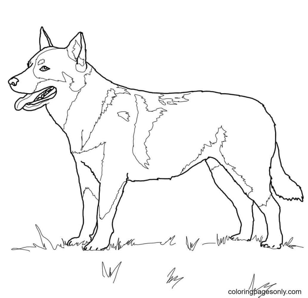 Puppy German Shepherd Coloring Page