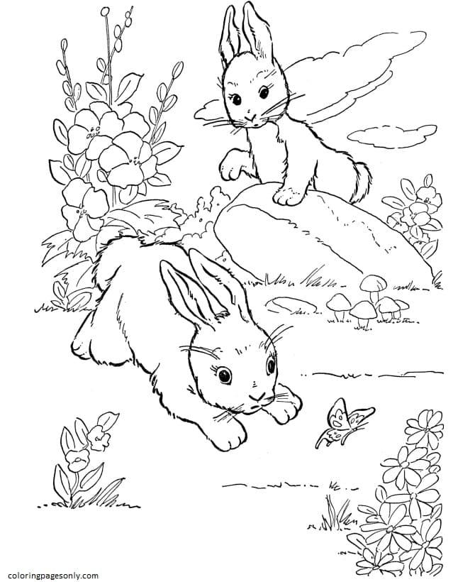 Rabbit Bunny-Farm Animal Coloring Page