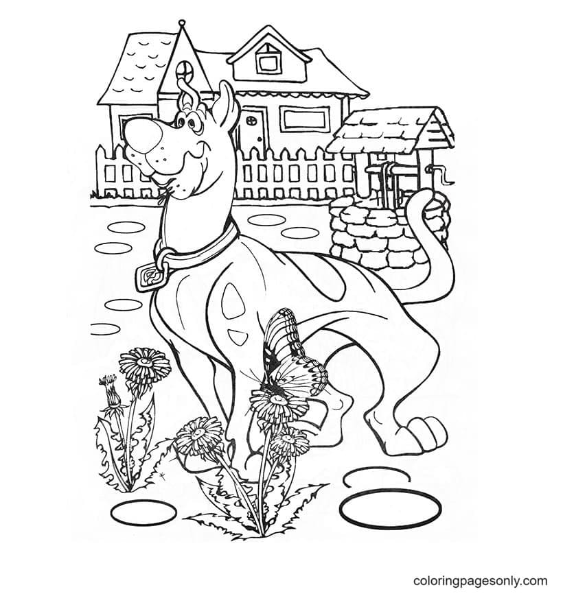 Scooby Doo in the village Coloring Page