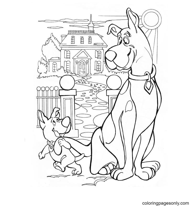 Scrappy Doo calls Scooby Doo to hunt for butterflies Coloring Page
