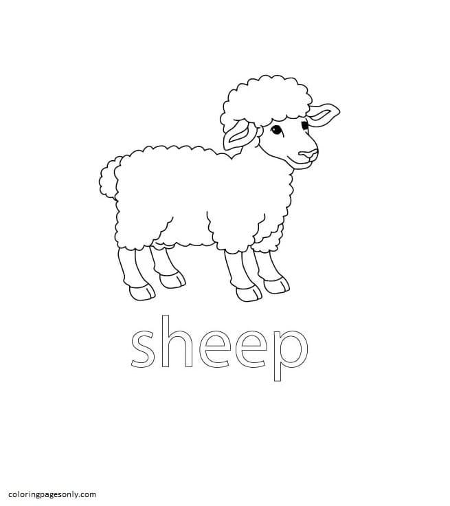 Sheep Farm Coloring Page