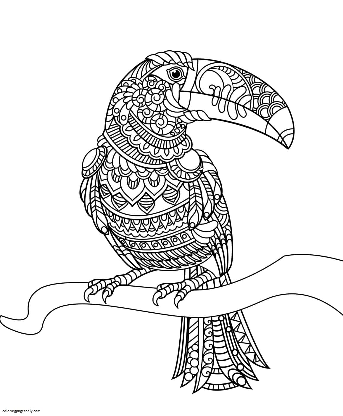 Toucan Zentangle Coloring Page