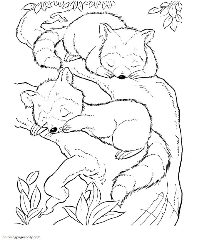 Two Squirrels Coloring Page