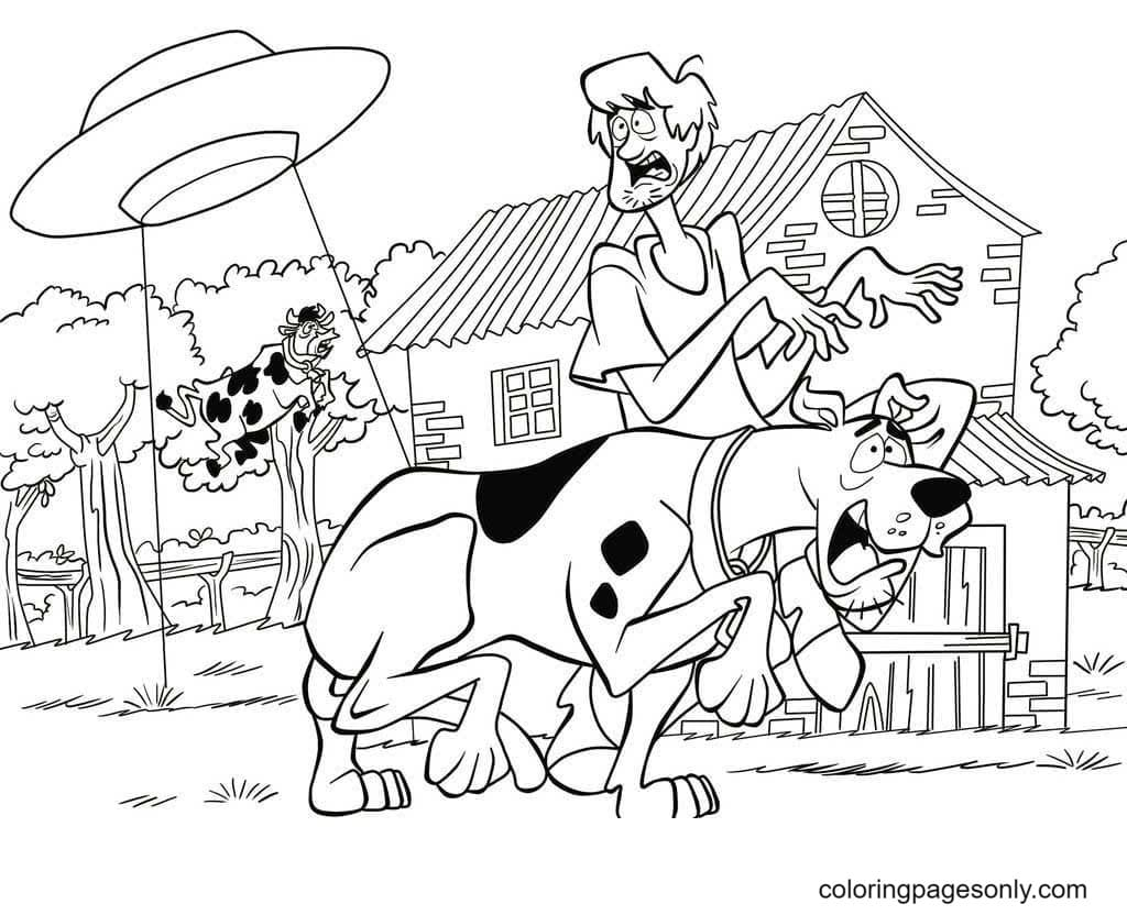 UFO catches a cow, Shaggy and Scooby run as fast as possible Coloring Page