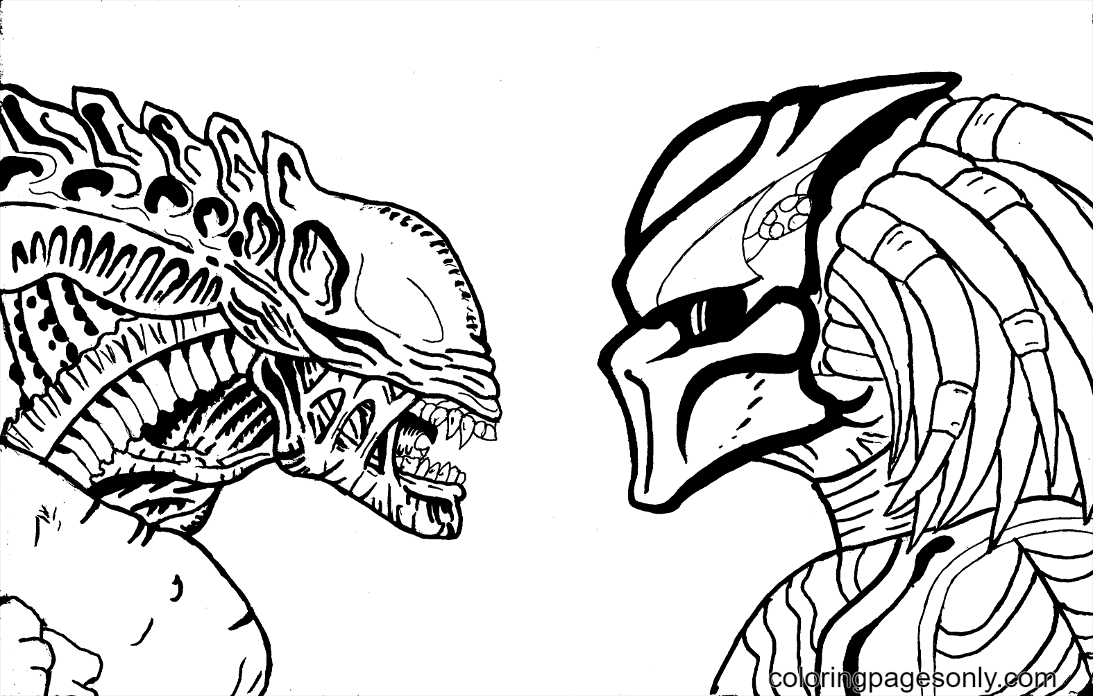 Alien And Predator Coloring Page