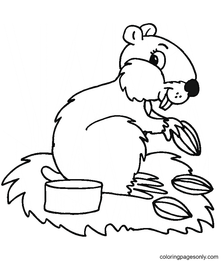 Animal Hamster Coloring Page