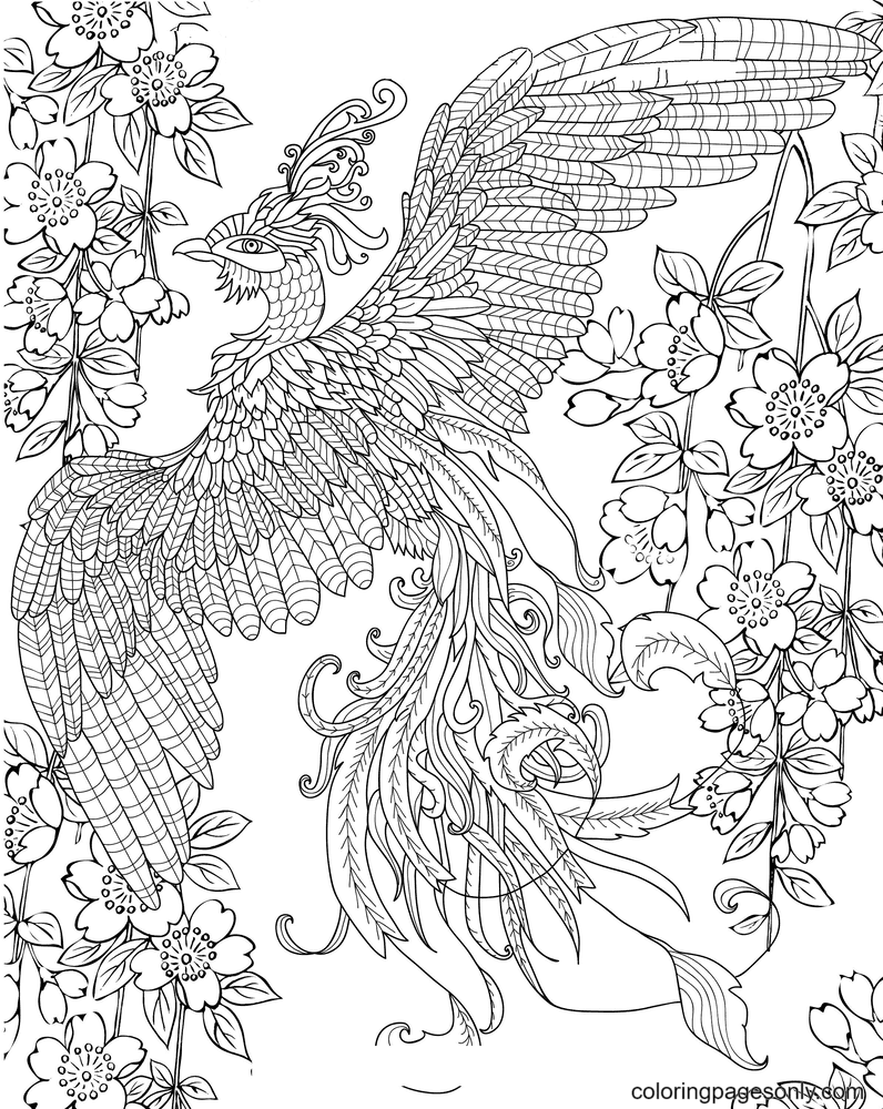 Beautiful Phoenix to print Coloring Page
