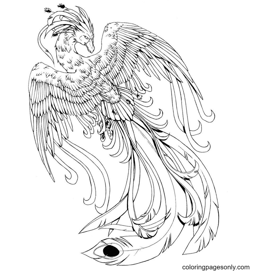 Bird Phoenix Free Print Coloring Page