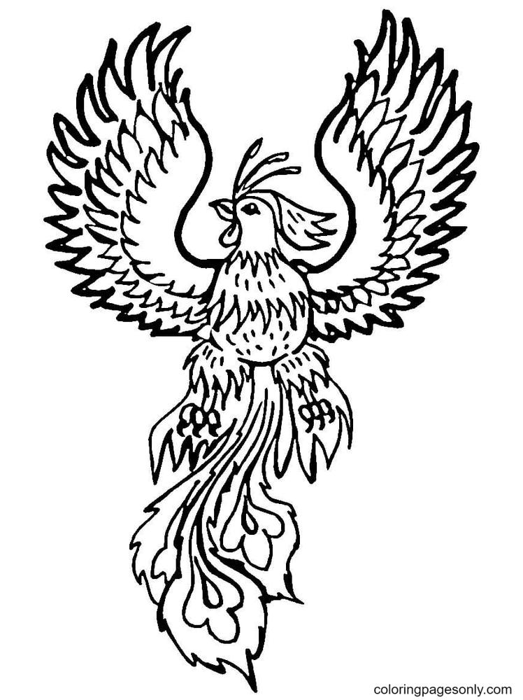 Bird Phoenix Free Coloring Page