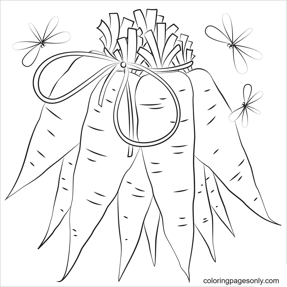 Bunch of Carrots Coloring Page