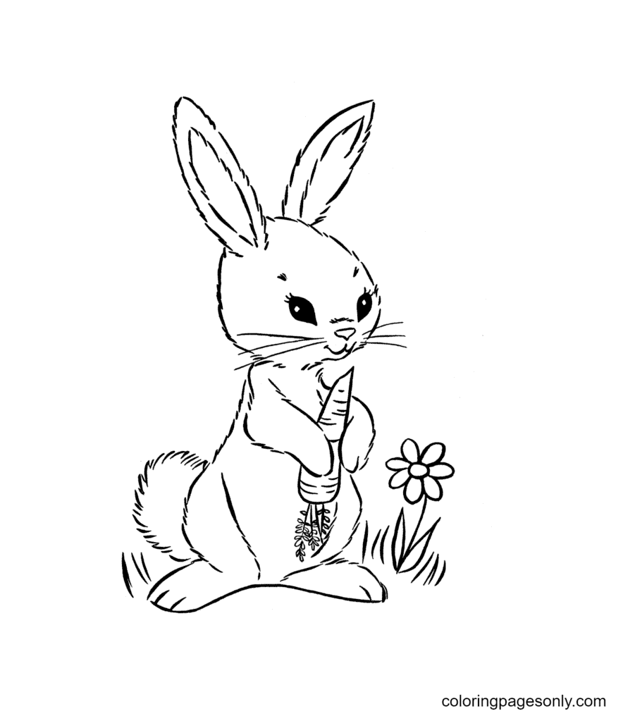 Bunny Holding A Carrot Coloring Page