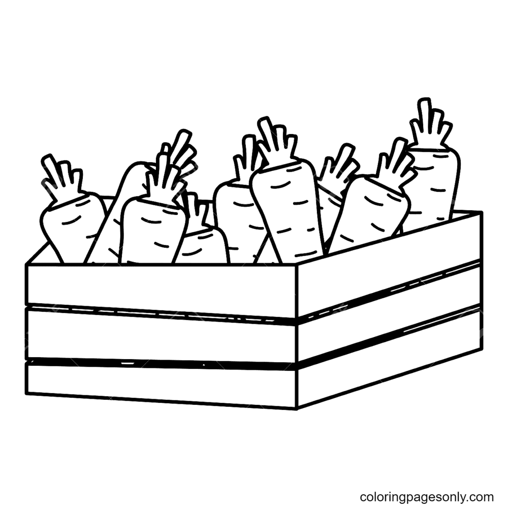 Carrot Inside Wood Basket Coloring Page