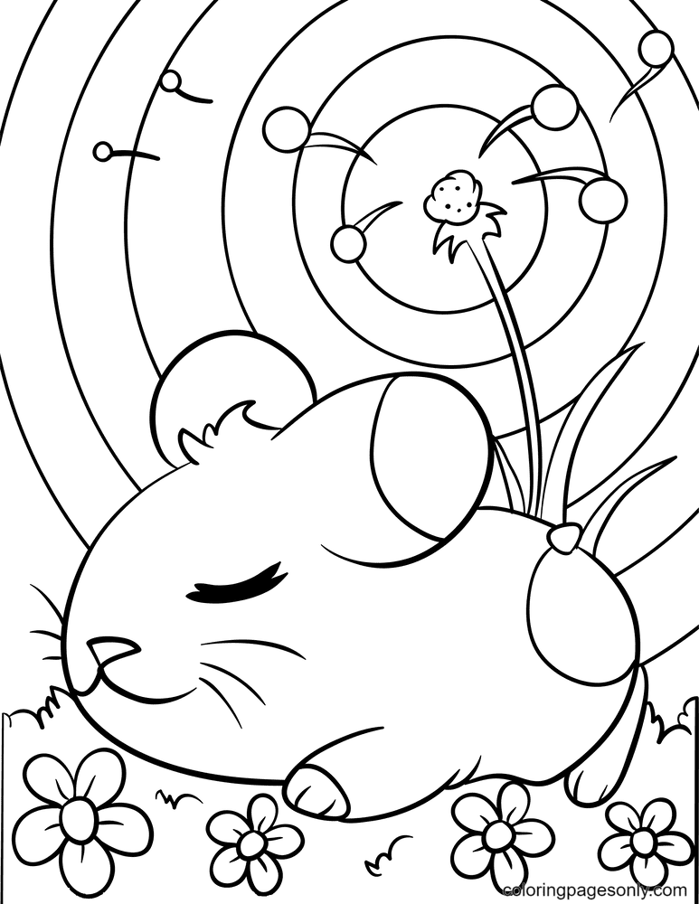Cute Hamster Guinea Pig Coloring Page