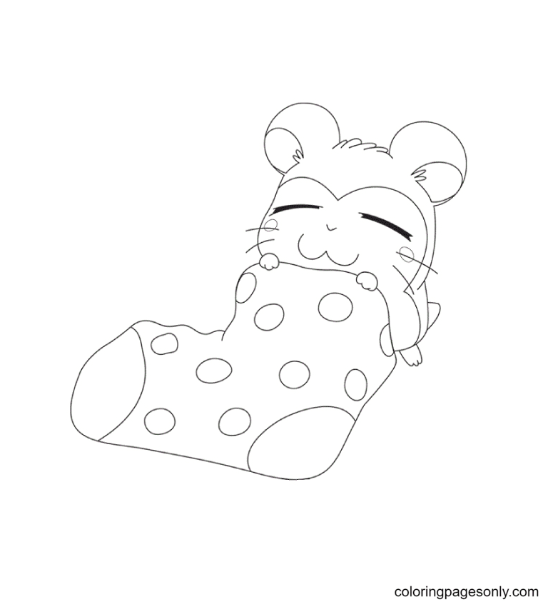 Cute Hamster in a Sock Coloring Page