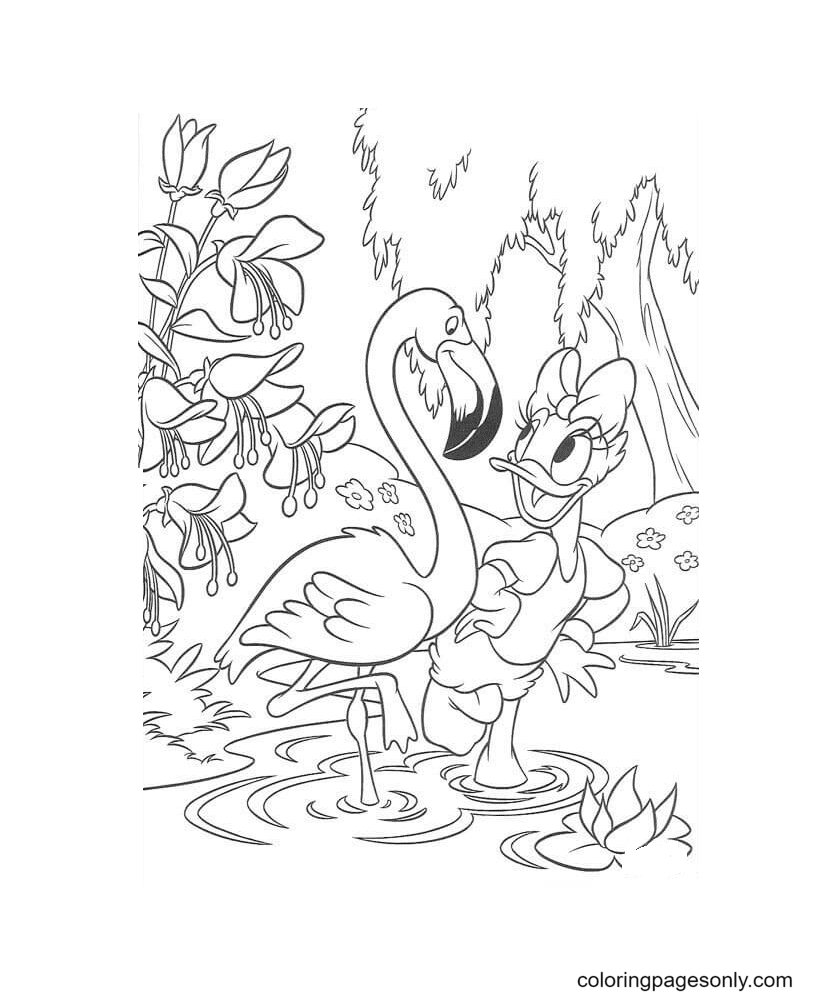 Daisy And White Egret Coloring Page