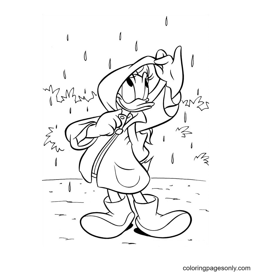 Daisy In The Rain Coloring Page
