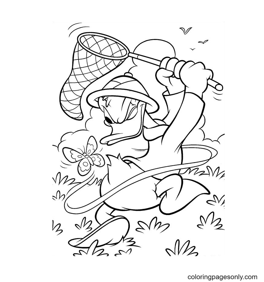 Donald Catching Butterfly Coloring Page