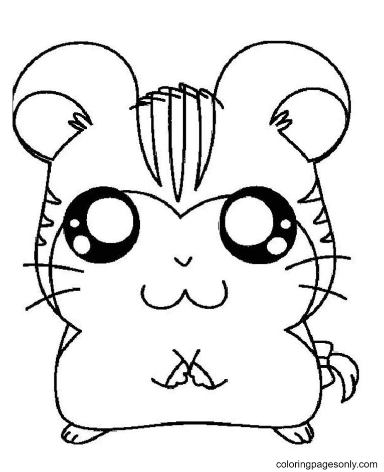 Free Hamster Coloring Page