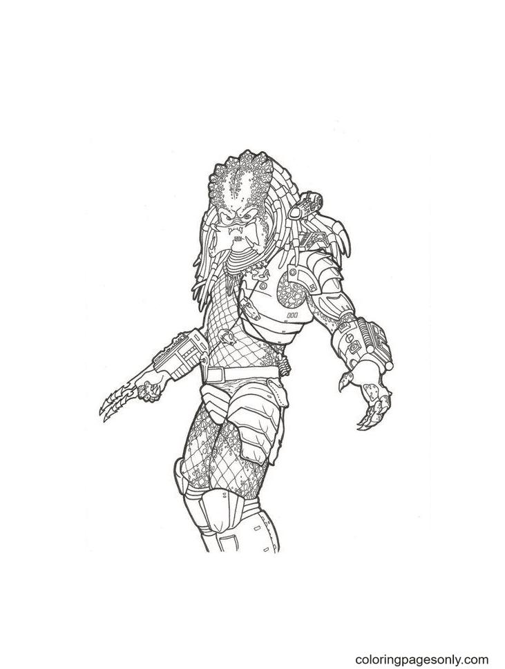 Free Predator Coloring Page