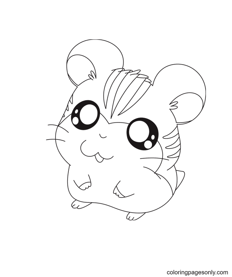 Funny Hamster Coloring Page