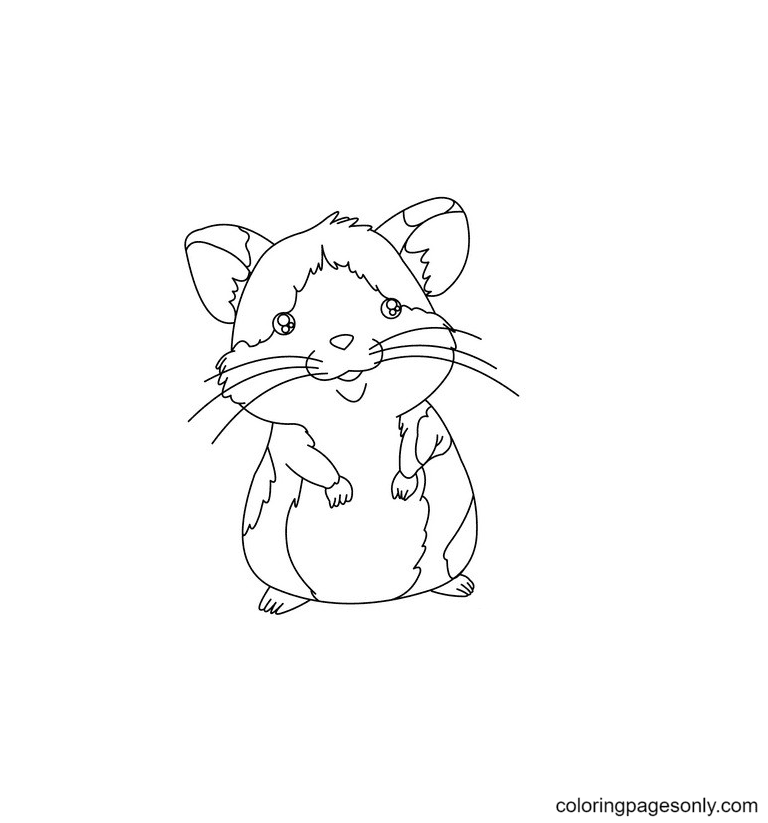 Hamster Free Printable Coloring Page