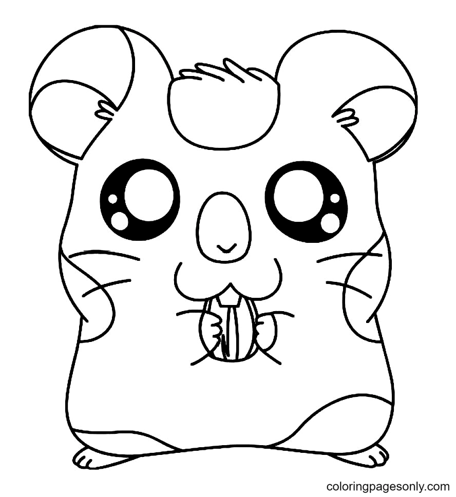 Hamster eat Seed Flowers Coloring Page