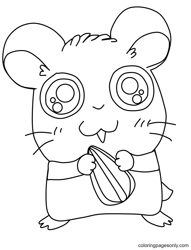 Hamster with Seed Coloring Page