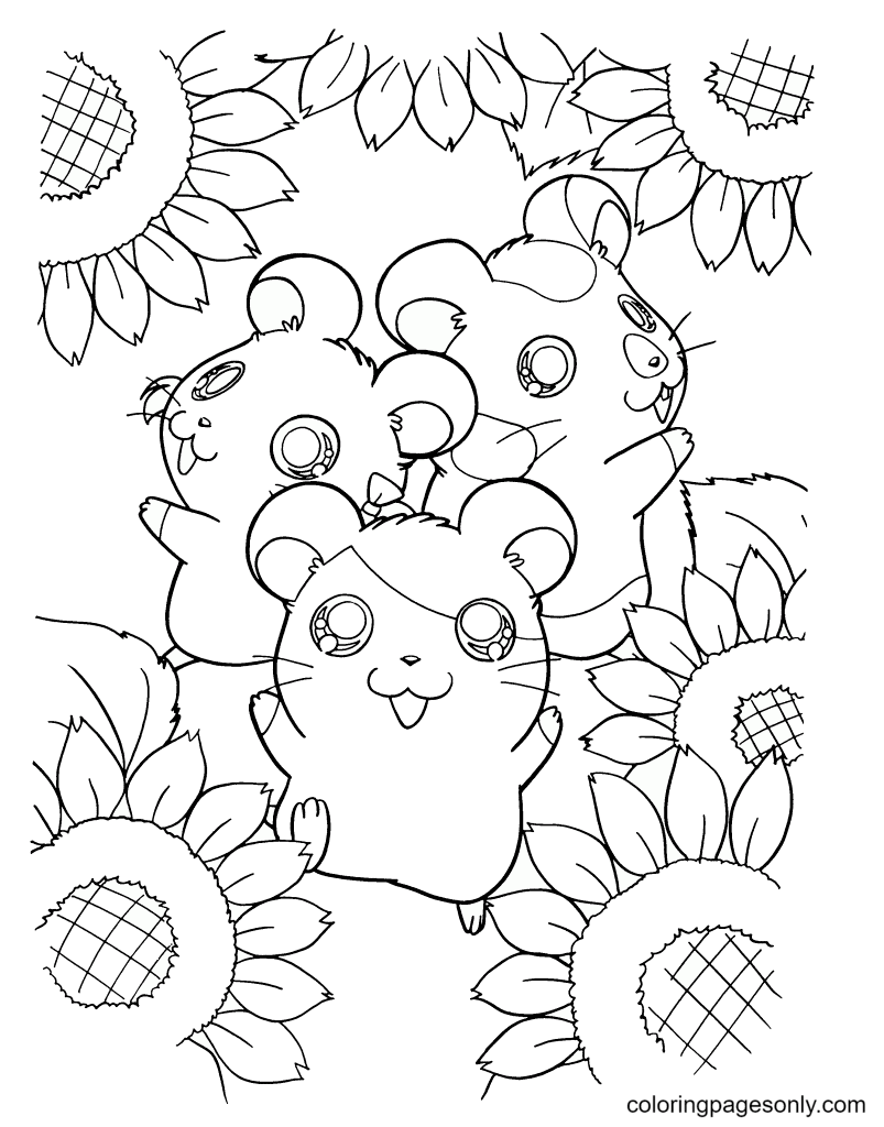 Hamsters With Sun Flower Coloring Page