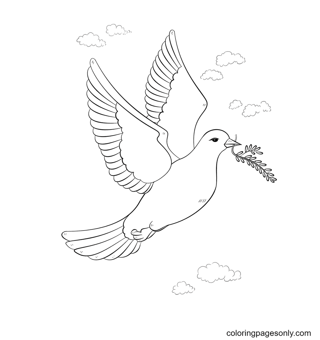 Peace Dove with Olive Branch Coloring Page