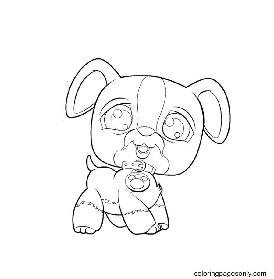 Pet Shop Dog Coloring Page