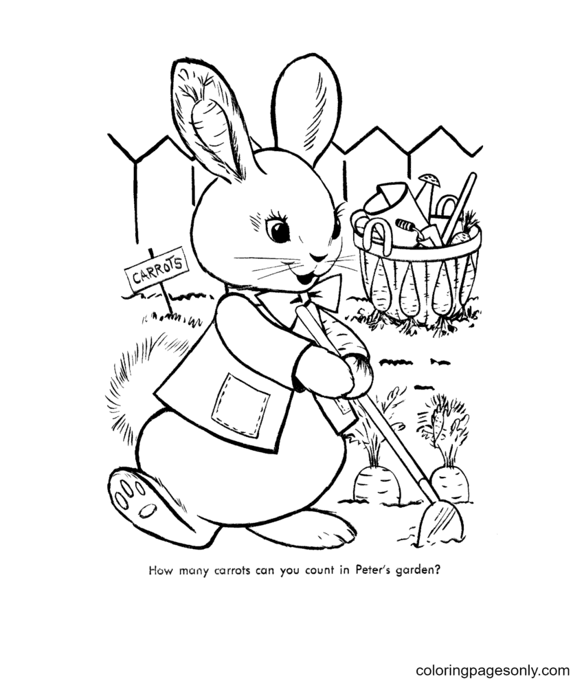 Peter Rabbits Carrot Garden Coloring Page
