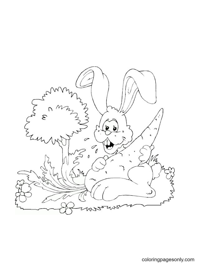 Rabbit Big Carrot Coloring Page