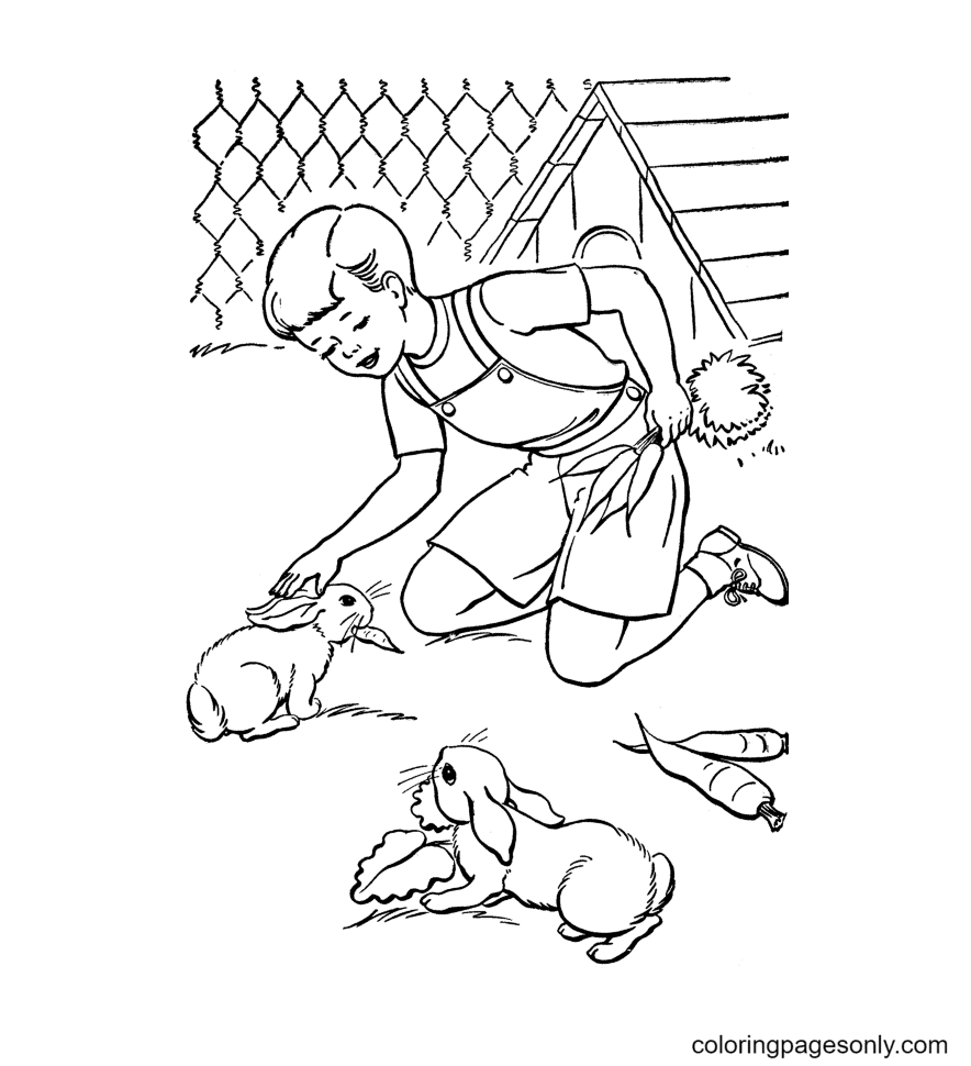 Rabbit Eating Carrots Coloring Page