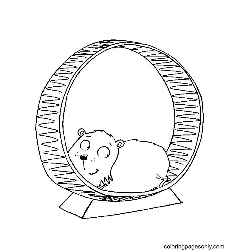 The Hamster on a Hamster wheel Coloring Page