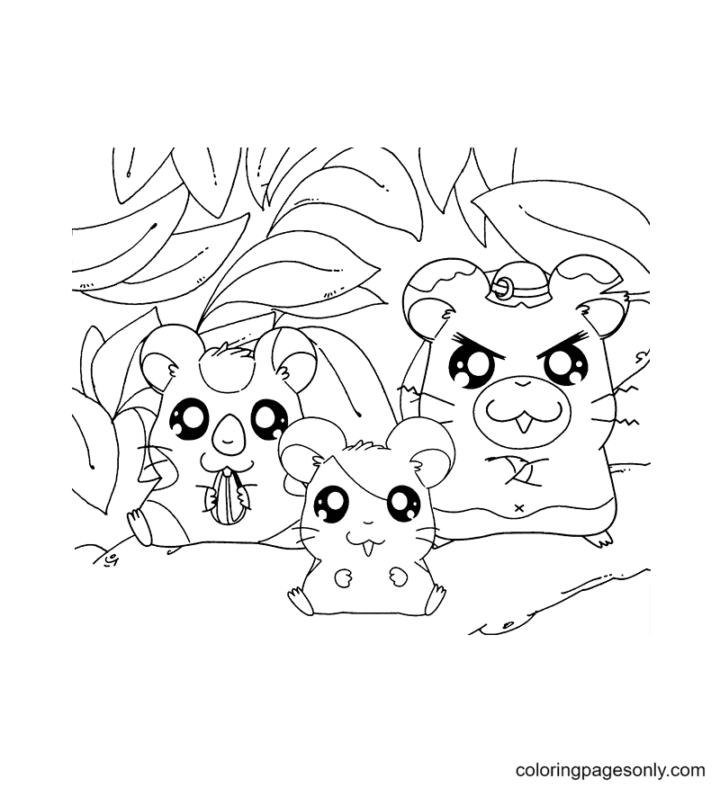 Three Cute Hamsters Coloring Page