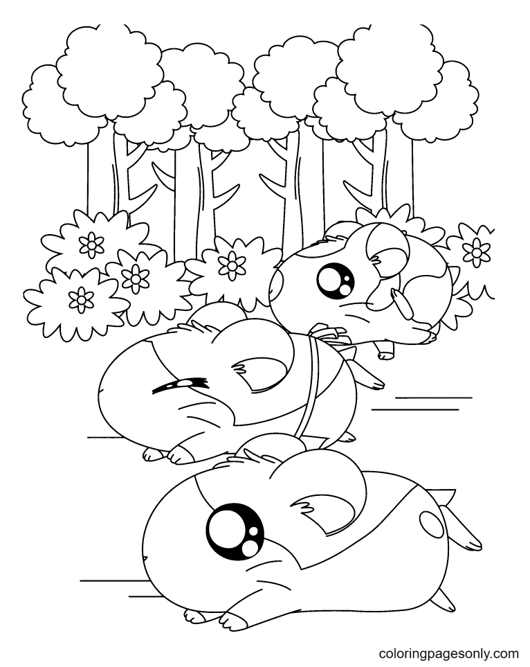 Three Hamsters in the forest Coloring Page