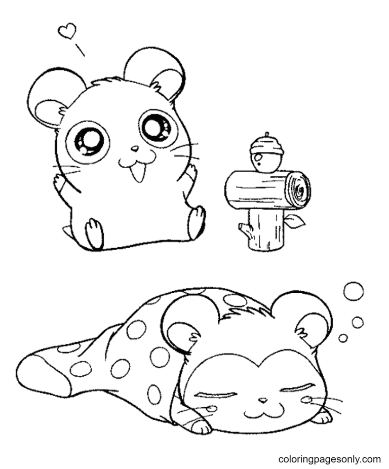 Two Cute Hamsters Coloring Page