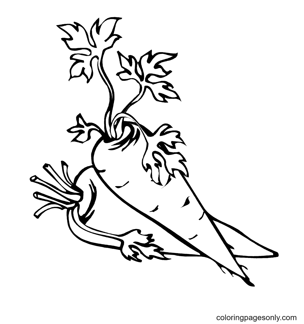 Two cute Carrots Coloring Page